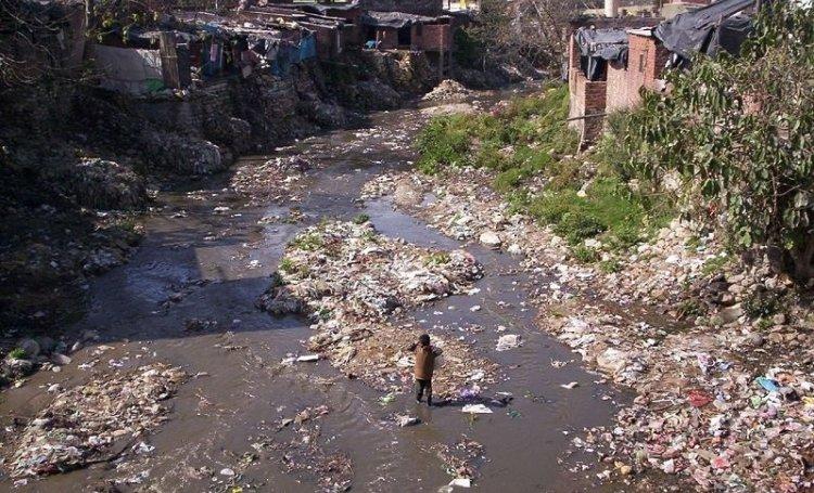 Ambiente: scoperti a Bombay i virus più grandi al mondo